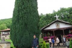 manastir-poganovo-10