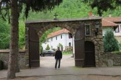 manastir-poganovo-19